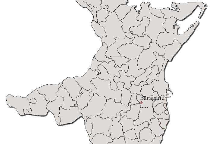 Primaria Baraganu - site nou oficial